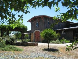 Terra D'Oro Winery